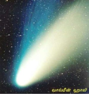 fig-1a-comet-halley.jpg
