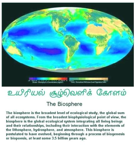 fig-1a-the-earths-biosphere1