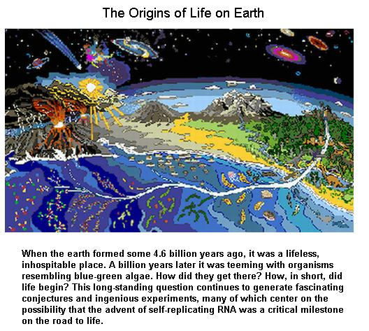 the-origins-of-life
