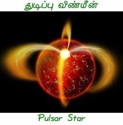 Fig 1G Pulsar