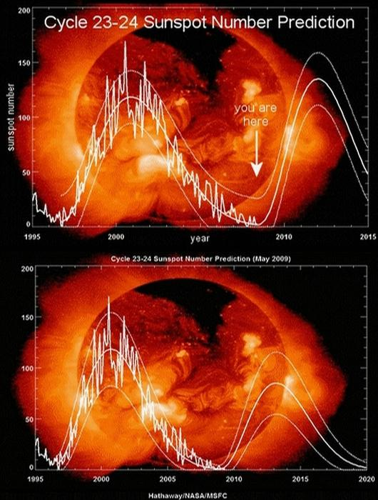 Sunspot Prediction of Solar Cycle 24