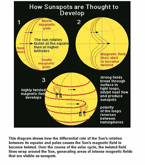 Sunspots Development