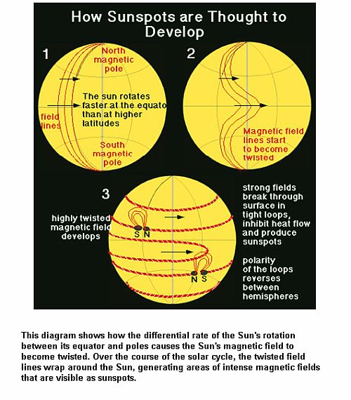 Sunspots Development