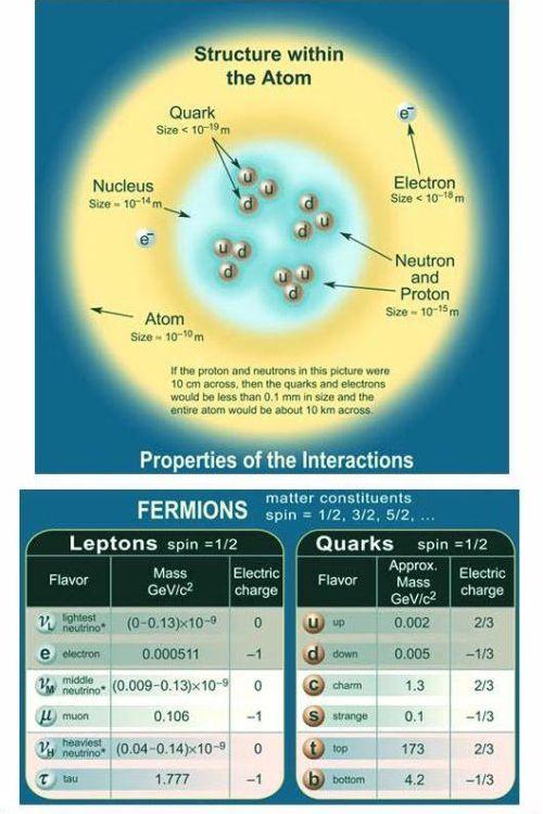 Fig 1G Fermions