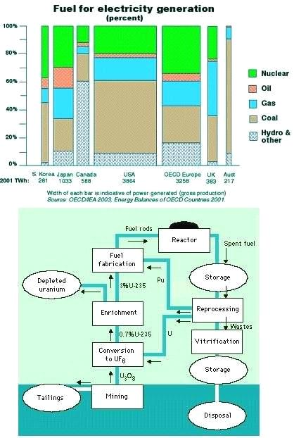 Nuclear Fuel Processing