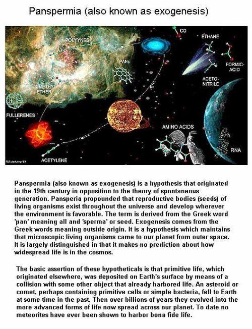 Fig 8 Details of Panspermia