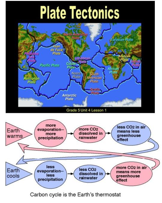 Carbon Cycle in the Earth
