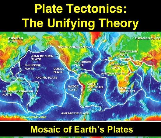 Fig Mosaic Plates