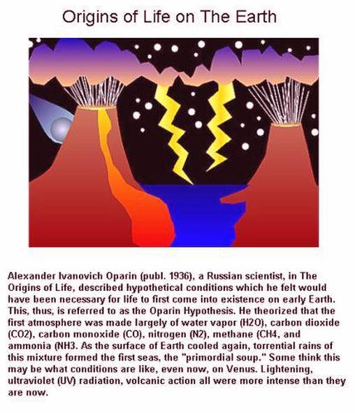 Origins of life 1